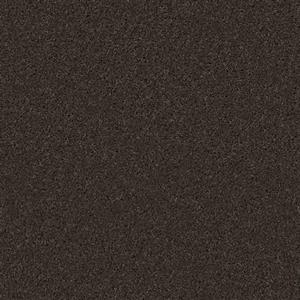 Carpet BATISTE 2918M Bean