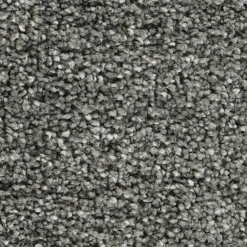 Perceptive Amherst Gray 6