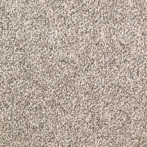 Mohawk Industries Rustic Revival Carpet Flooring