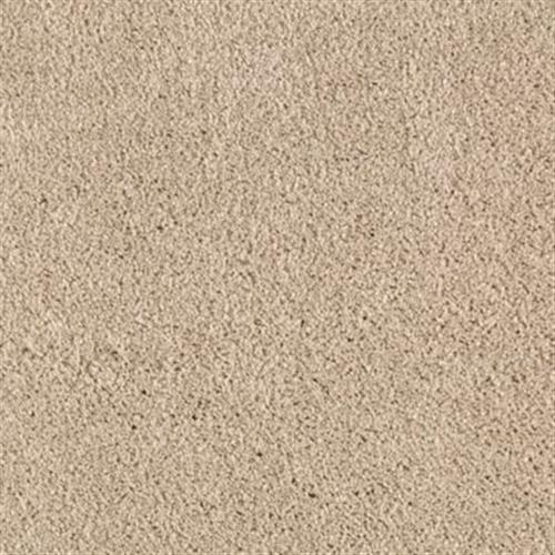 American Splendor Iii Desert Star 129