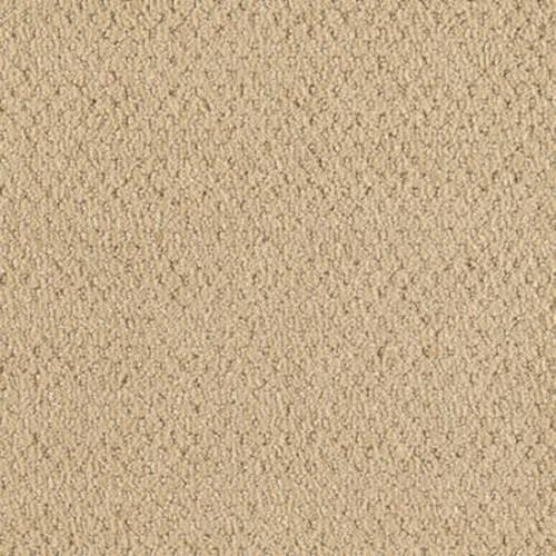 Comfortably Classic Neutral Beige 841