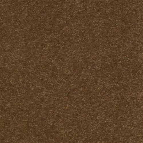 Calming Color Pecan Shell 866