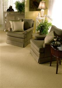 Carpet Bergeron Nile Green 29773 thumbnail #2