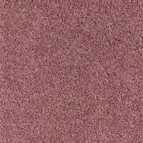Trimaran Pink Coral 102