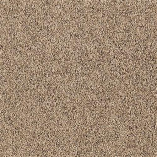 Pleasing Qualities Cedar Chip 509