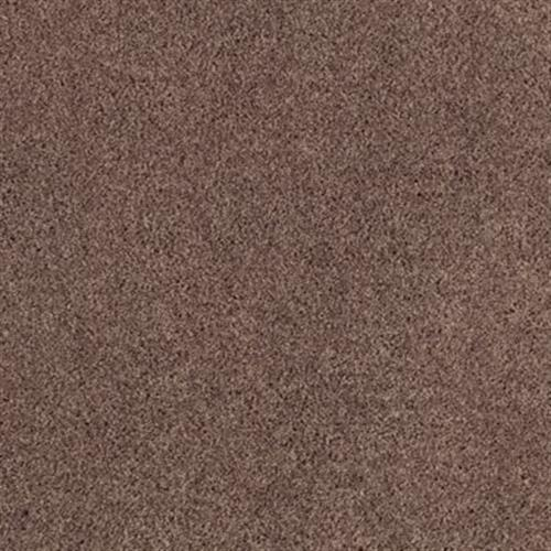 Soft Attraction I Velvet Brown 879