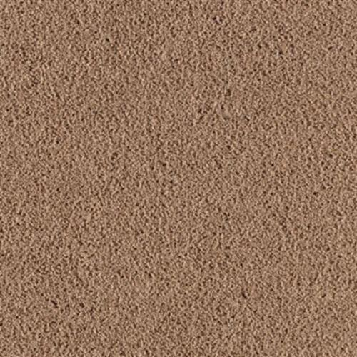 Simply Soft Iii Colonial Brown 861