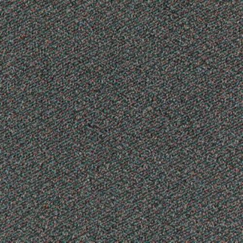 Dot Com Evergreen 686