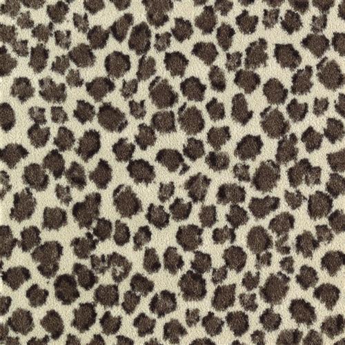 Savanna Scenes Snow Leopard Snow Leopard 4969