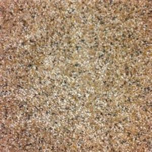 Carpet CoastalMood CMTA-545 ToastedAlmond