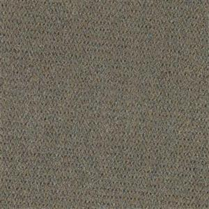 Carpet AlmaMater 1E61-942 WeatheredTimbers