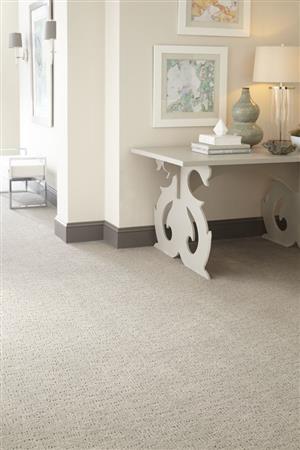 Mohawk Industries Modern Maven Safari Plains Carpet