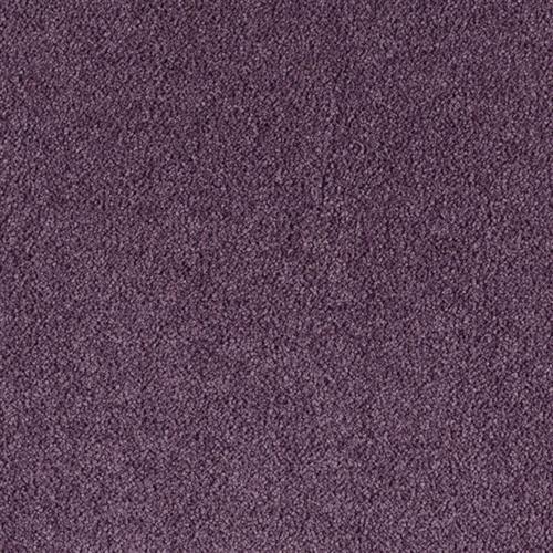 Supermodern Style Royal Purple 9464