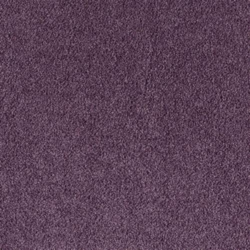 Supermodern Style Royal Purple 9464