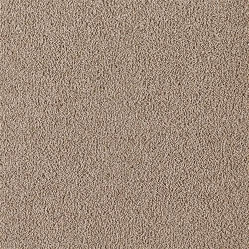 Supermodern Style Barely Brown 9848