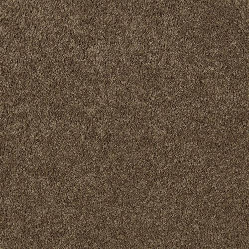 Authentic Heirloom Raw Sienna 9898