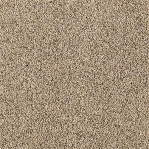 Pure Harmony Neutral Ground 505