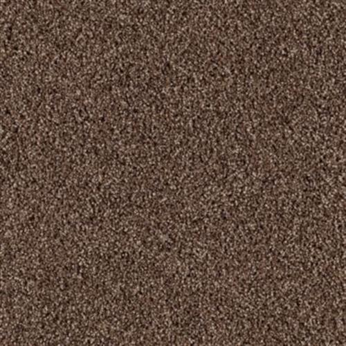 Vivid Statement Walnut Shell 582