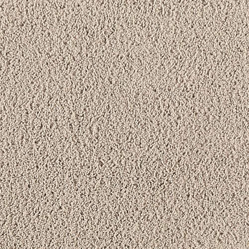 Amazing Parched Sand         746