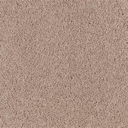 Pleasant Dreams Champagne Beige 526