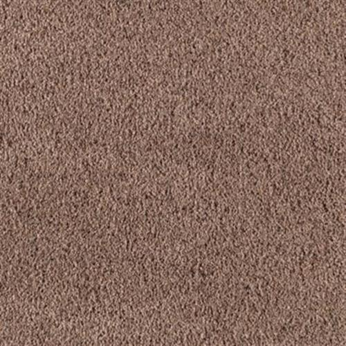 Visionary Iii Mellow Suede         506