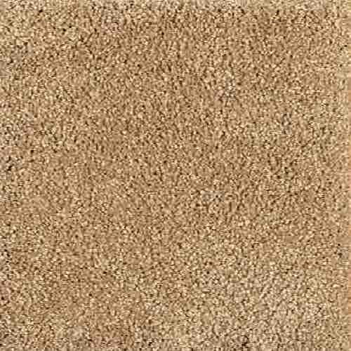 Mohawk Industries Calming Assurance White Asparagus Carpet