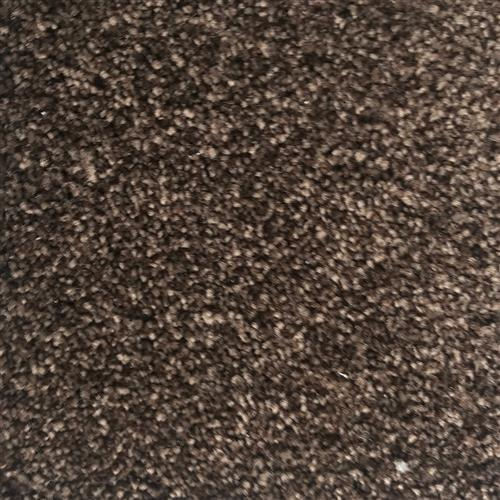 In-Stock Carpet By Mohawk Coffee-Smartstrand