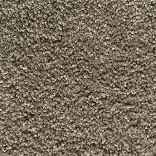 In-Stock Carpet By Mohawk Sp135