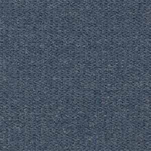 Carpet AlmaMater 1E61-579 TrueBlue