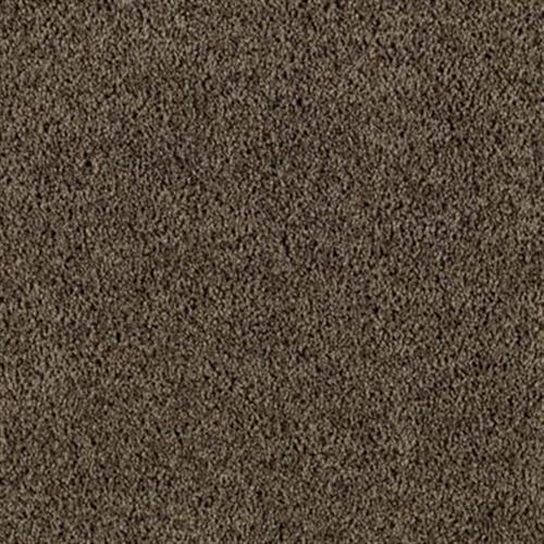 Fine Balance Dried Peat 502