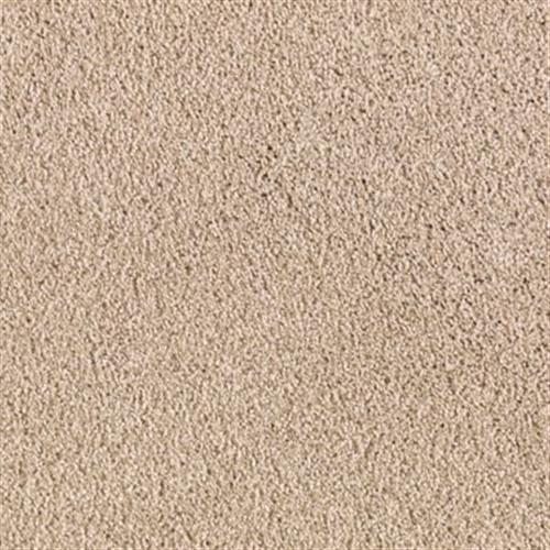 Natural Appearance Shadow Beige 712