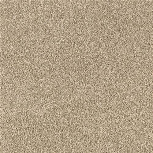 Cc Carpet Carpet Flooring Price