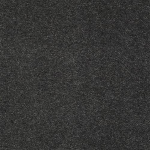 Harmonic Hue Charcoal Briquette 989