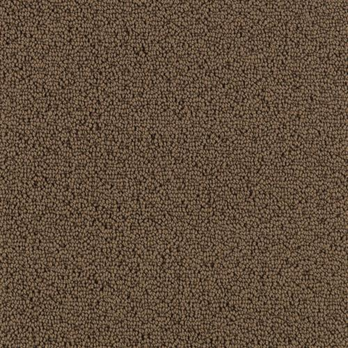 Elegant Approach Colonial Brown 3881