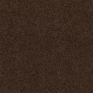 Carpet CoastalPathI 2E61-504 BlackWalnut