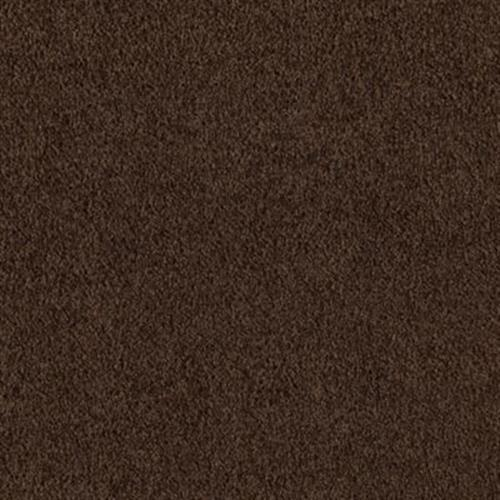 Coastal Path I Black Walnut 504
