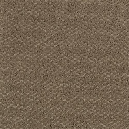 Notting Hill Toasted Taupe 503