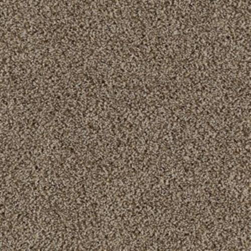 Seeker Coastal Beige 739