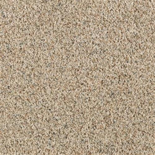 Revealing Beauty in Sea Shells - Carpet by Mohawk Flooring