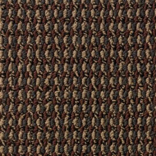 Global Image Redwood 378