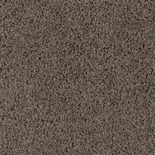 Precious Expression Dried Peat 508