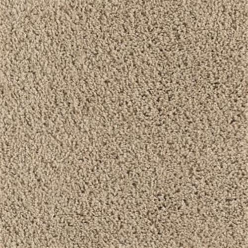 Precious Expression Brushed Suede 531