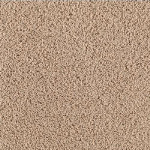 Vivacious 05 Includes Product Installation 1/2 8Lb Pad Carpet Tear Out And Furniture
