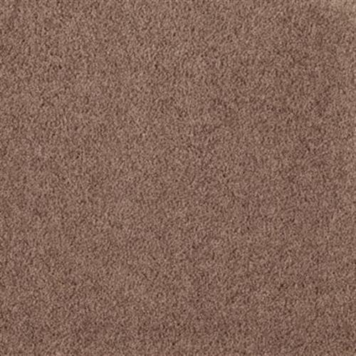 Eternal Allure Ii Burnished Brown 507
