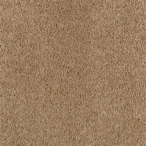 Simply Spectacular Chamois Cloth 9841