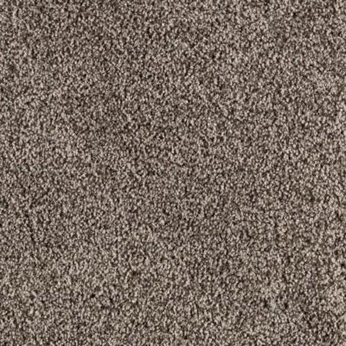 Hampton Isle Brown Thrush         505