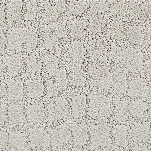 Luxurious Debut in Forest Twilight - Carpet by Mohawk Flooring