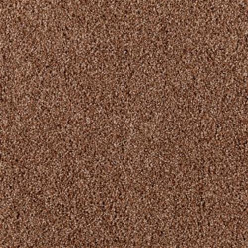 Luxurious Color Amber Sunset 584