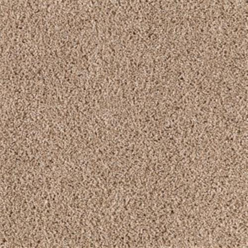 Luxurious Color Biscotti 591