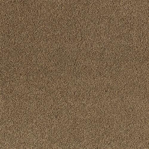 Windsor Luxury Char Brown 9878
